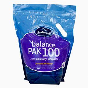 BioGuard Balance Pak 100 Alkalinity Increaser - 12 Lb