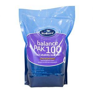 BioGuard Balance Pak 100 Alkalinity Increaser - 4 Lb